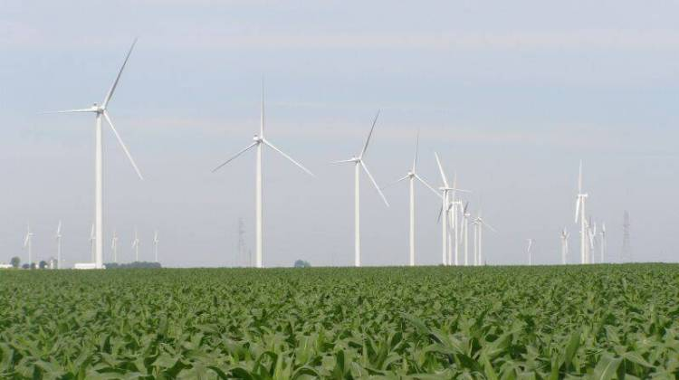 Indiana's Wind Industry Still Growing Despite Challenges