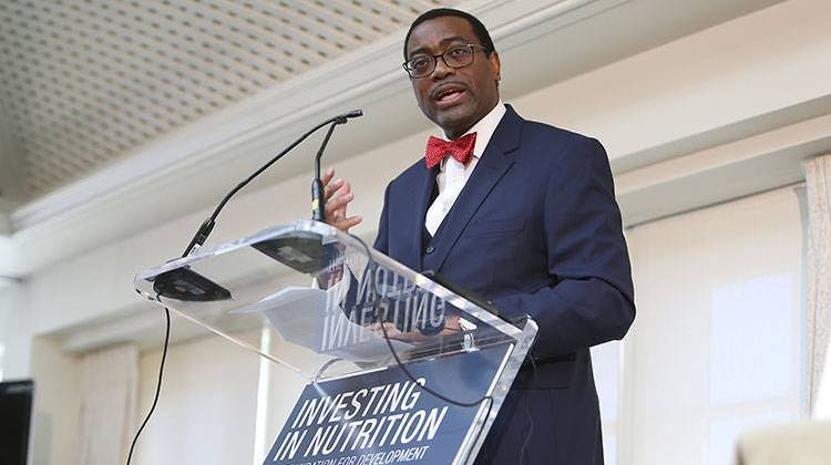 Akinwumi Adesina, President of the African Development Bank, speaks at Investing in Nutrition: The Foundation for Development panel discussion on Sunday, April 17, 2016 at the Hay-Adams Hotel in Washington, D.C. - Paul Morigi/AP Images for 1,000 Days