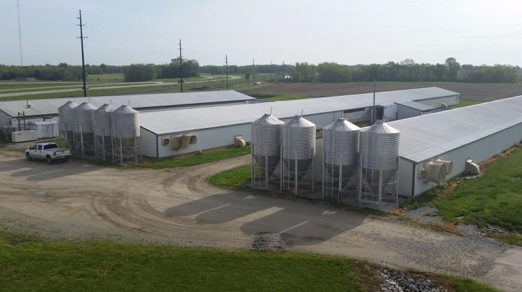 EPA Rule Means CAFOs Don't Have To Report Animal Waste Emissions