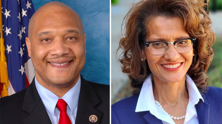 Meet The 7th Congressional District Candidates: Andre Carson And Susan Marie Smith