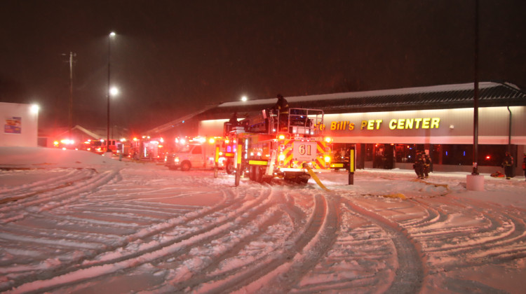 100 Animals Killed In Fire At Indy Pet Store