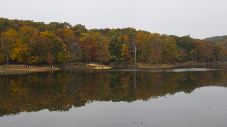 Climate Shifts Mean Less Vibrant Fall Color For Indiana