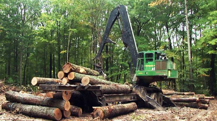 Bills To Limit Logging In Indiana's State Forests Fail
