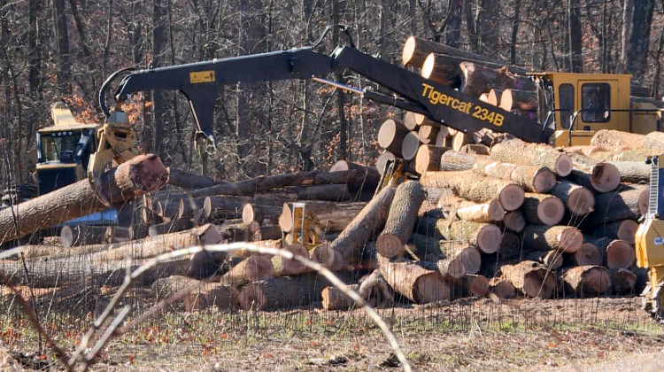 Democrats Fail At Attempt To Change Logging, Forest Management In Indiana