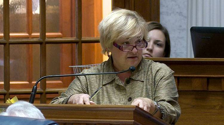 Sen. Karen Tallian speaks on the Senate floor against the repeal of the common construction wage, a minimum wage on public construction projects. - Gretchen Frazee