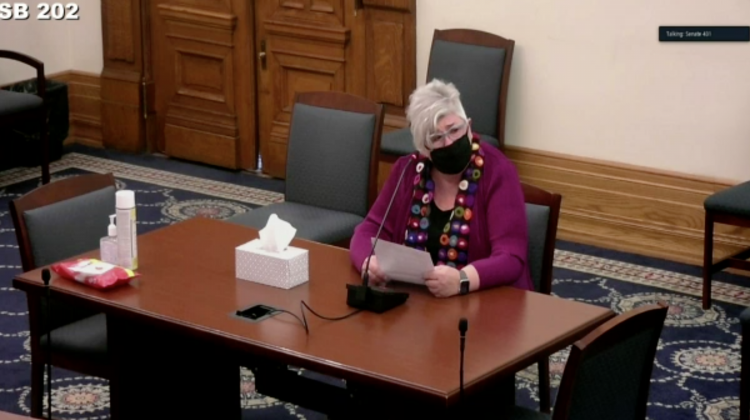 Bringhurst, Indiana, resident Vickie Ayres advocates for the Essential Family Caregiver Program in a Senate committee.  - Screenshot of iga.in.gov