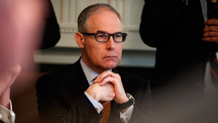 Ex-EPA Chief Pruitt's Indiana Lobbying Bid Has Likely Failed
