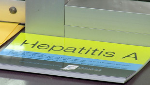 Hepatitis A Outbreak Slowing