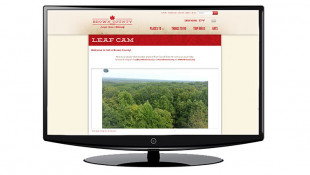 Brown County Officials Bring Back Fall 'Leaf Cam'