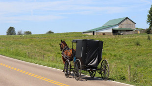 How The Amish Live Uninsured But Stay Healthy