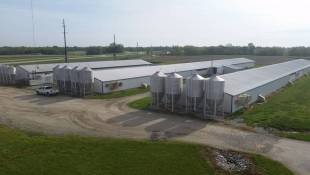 Hoosiers Outspoken On Confined Animal Farms