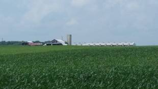 Bartholomew County CAFO Neighbors Win Property Tax Cuts
