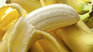Once Exotic, Now Ubiquitous, Bananas Deserve A Bunch More Respect