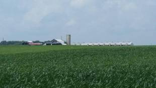 Ag Study Committee Talks CAFOs
