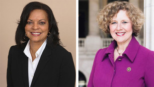 Dee Thornton To Face Incumbent Susan Brooks For U.S. House