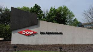 Agribusiness Antitrust Review Delays DowDupont Merger