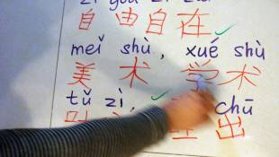 Educators Say More Guidance Needed For Dual Language Programs