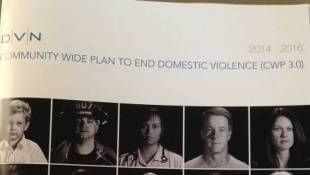 New Domestic Violence Plan Launched