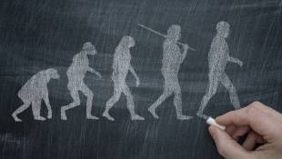 On Evolution, A Widening Political Gap, Pew Says
