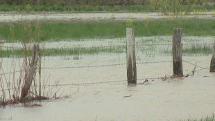 Heavy Rains More Common In Indiana Due To Climate Change
