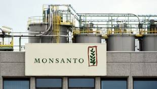 Chemical Giant Bayer Agrees To Buy Monsanto For $66 Billion
