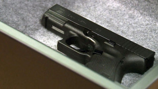 Bill Would Let Schools Spend State Dollars On Gun Training
