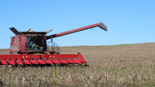 Updated Agriculture Outlook For 2020 Shows Soybeans More Profitable Than Corn