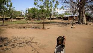 Malawian Farmers Say Adapt To Climate Change Or Die
