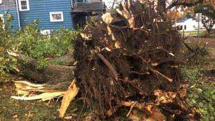 EF2 Tornado Among 4 Twisters Hitting Indiana
