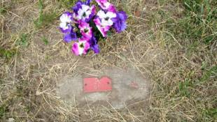 Central State's Forgotten Cemetery Remembered