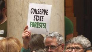 Logging Legislation Dies In Committee Without A Vote