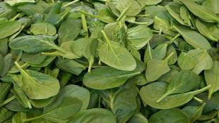 Dole Recalls Some Spinach After Salmonella Found In Sample