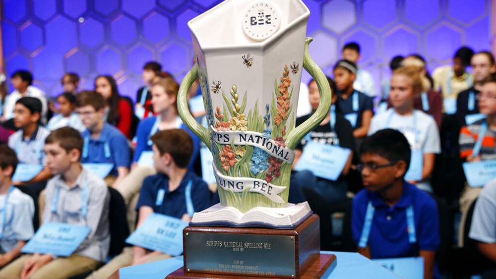 Former Indianapolis Nonprofit CEO Takes Over As National Spelling Bee Chief