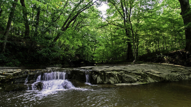 Indiana's Nature Preserves