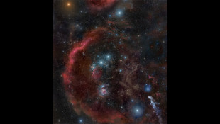 Orion's Belt