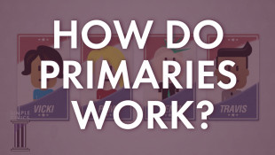How Do Primaries Work?