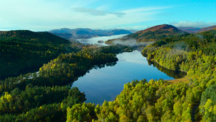 The Creation of 'Trees for Life' to Rewild Scotland